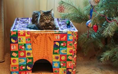 Новогодний кошкин дом