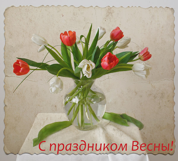 IMG_4195-5