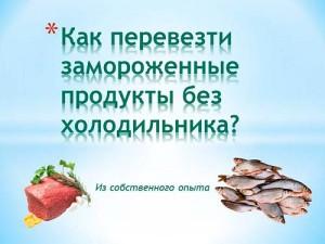 Как перевезти замороженные продукты без холодильника