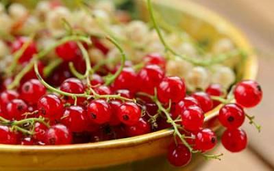 Смородиновое варенье пятиминутка красное